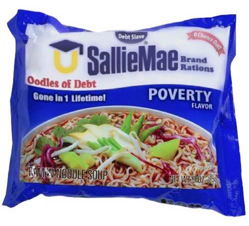 sallie mae oodles